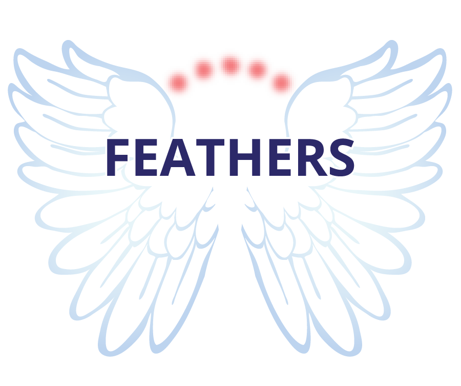 Feathers Project